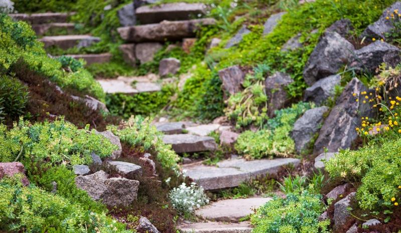 Oosterse Tuin Ideeen : Rotstuin aanleggen in je tuin infobron
